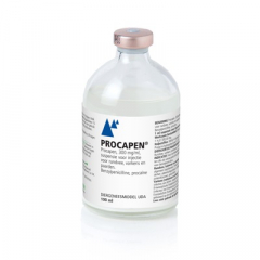 Procapen 300 mg/ml 100 ml
