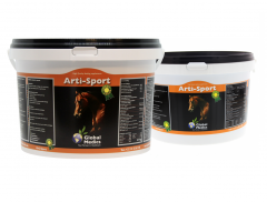 Arti-Sport