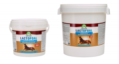 Lactofoal