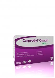 Carprodyl Quadri Flavour tablets 50mg 100 tablets