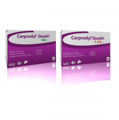 Carprodyl Quadri Flavour tablets