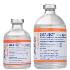 Dexa-ject UDA 2 mg/ml 100 ml