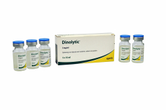 Dinolytic 5x10 ml