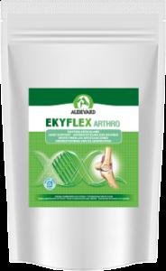 Pack 6 Ekyflex Arthro 120 g