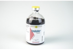 Endofer 100mg/ml - 100ml
