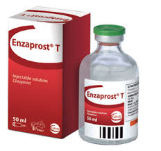 Enzaprost 50 ml
