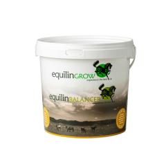 Equilin - Storage Bucket