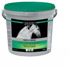 Mega Base 10 kg