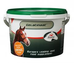 Gelatinaat 5 kg Paard