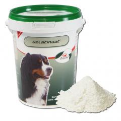 Gelatinaat 500 g Hond