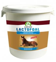 Lactofoal 14 kg