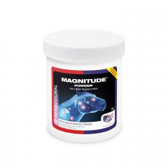 Magnitude 1000 g