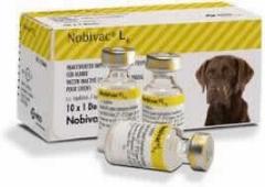 MSD - Nobivac L4, 10x1 dose