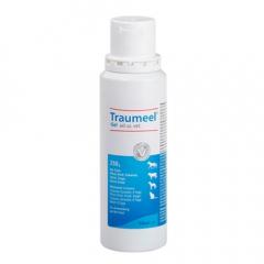 Traumeel Gel 250 ml