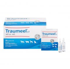 Traumeel LT ad us. vet. 5 ml amp