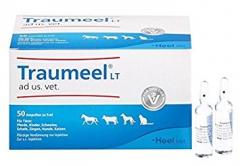 Heel - Traumeel LT 50 x 5 ml (ampoules)