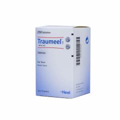 Heel - Traumeel T ad us. vet. 250 tabletten