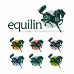 Equilin - Brochure