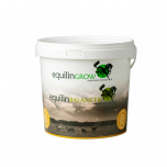 Equilin - Storage Bucket
